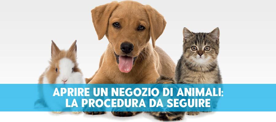 Aprire un negozio di animali: la procedura da seguire