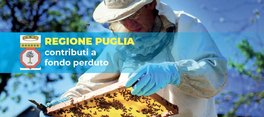 Contributi a fondo perduto per le imprese di apicoltura