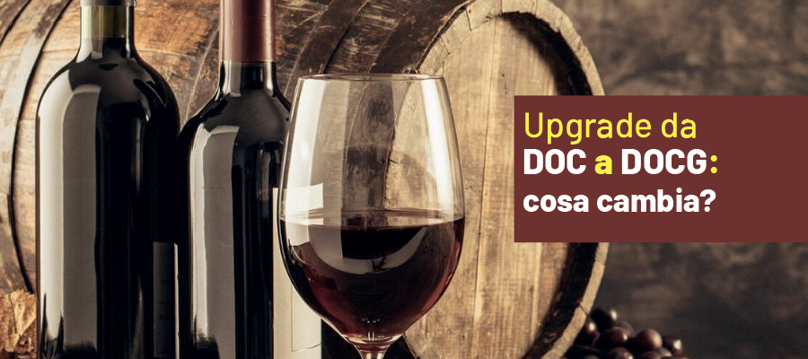 Passaggio del vino Doc a DOCG: tutte le novità in 3 domande