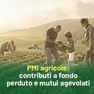 Contributi a fondo perduto e mutui agevolati per nuove PMI agricole