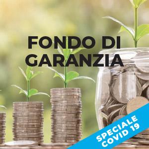 Fondo di Garanzia e Covid-19: garanzie dello Stato sui prestiti